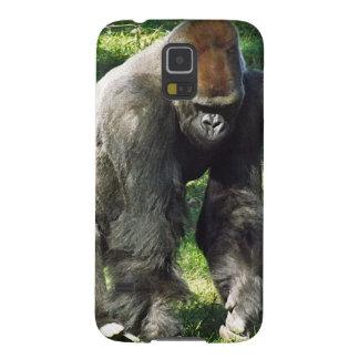 Silverback Male Lowland Gorilla Standing Up Galaxy Nexus Covers