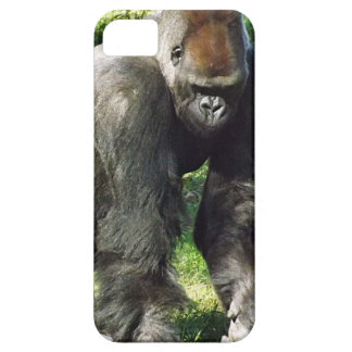 Silverback Male Lowland Gorilla Standing Up iPhone 5 Cases