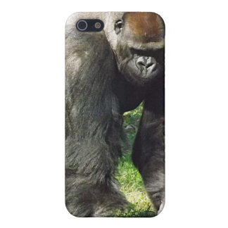 Silverback Male Lowland Gorilla Standing Up iPhone 5 Covers