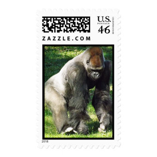 Silverback Male Lowland Gorilla Standing Up Postage Stamps