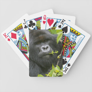 Silverback Mountain Gorilla Bicycle Playing Cards