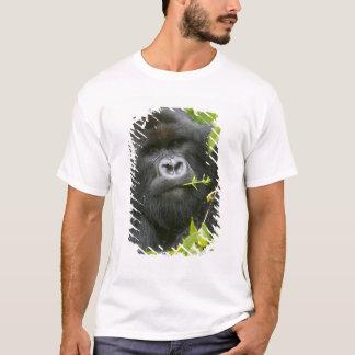 Silverback Mountain Gorilla T-Shirt
