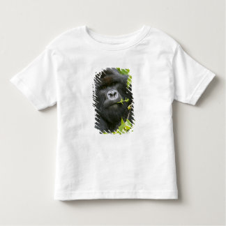 Silverback Mountain Gorilla Toddler T-shirt