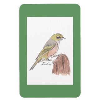 Silvereye Bird Flexi Magnet