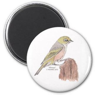 Silvereye Bird Magnet