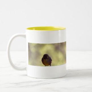 Silvereye Two-Tone Coffee Mug