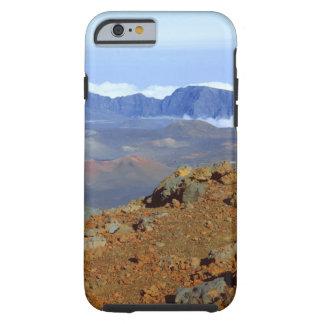 Silversword en borde del cráter de Haleakala de 2 Funda De iPhone 6 Tough