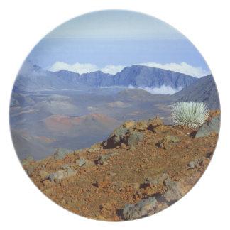 Silversword en borde del cráter de Haleakala de 2  Plato De Cena