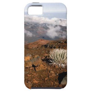 Silversword en borde del cráter de Haleakala de 3  iPhone 5 Case-Mate Carcasas
