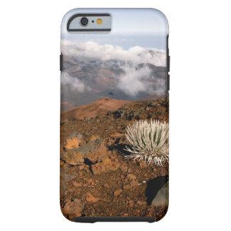 Silversword en borde del cráter de Haleakala de 3 Funda De iPhone 6 Tough