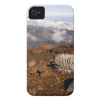 Silversword en borde del cráter de Haleakala de 3  Case-Mate iPhone 4 Coberturas
