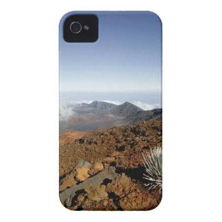 Silversword en borde del cráter de Haleakala de ce iPhone 4 Carcasas