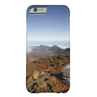 Silversword en borde del cráter de Haleakala de Funda De iPhone 6 Barely There