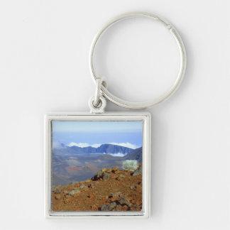 Silversword on Haleakala Crater  Rim from near 2 Keychain