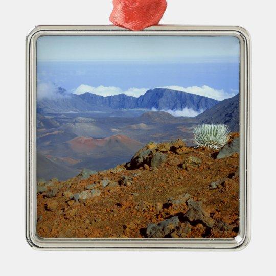 Silversword on Haleakala Crater  Rim from near 2 Metal Ornament