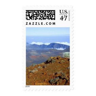 Silversword on Haleakala Crater  Rim from near 2 Postage Stamp