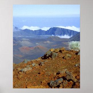 Silversword on Haleakala Crater  Rim from near 2 Poster