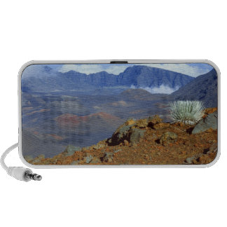 Silversword on Haleakala Crater  Rim from near 2 Notebook Speaker