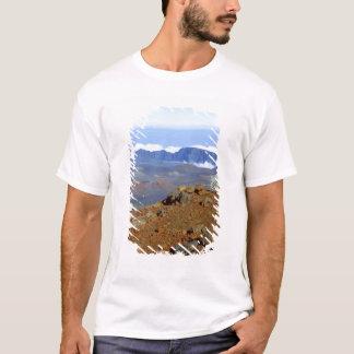 Silversword on Haleakala Crater  Rim from near 2 T-Shirt