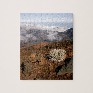 Silversword on Haleakala Crater  Rim from near 3 Jigsaw Puzzle