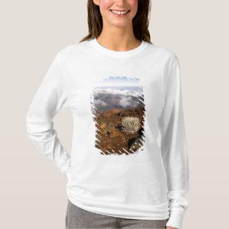 Silversword on Haleakala Crater  Rim from near 3 T-Shirt