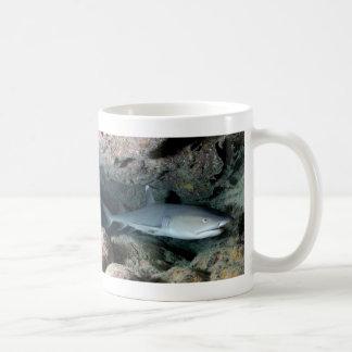 Silvertip Shark Mugs