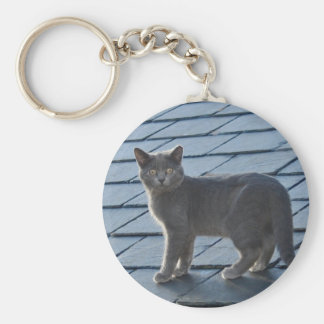 Silvery Grey Kitten Keychain