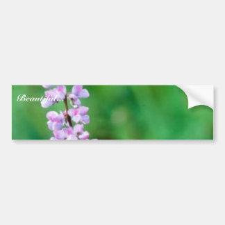 Silvery Lupine Car Bumper Sticker