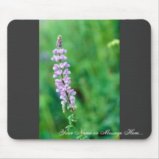 Silvery Lupine Mouse Pads