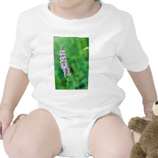 Silvery Lupine Baby Bodysuit