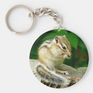 Sima lith can key holder chipmunk keyholder basic round button keychain