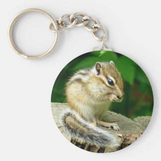 Sima lith can key holder chipmunk keyholder keychain