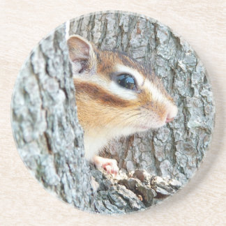 Sima lith, chipmunk coaster