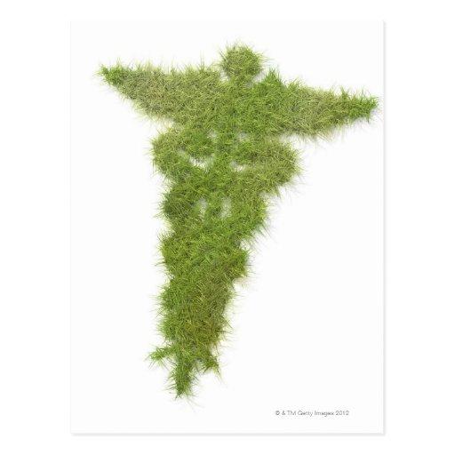 Símbolo de la medicina hecho de hierba tarjeta postal