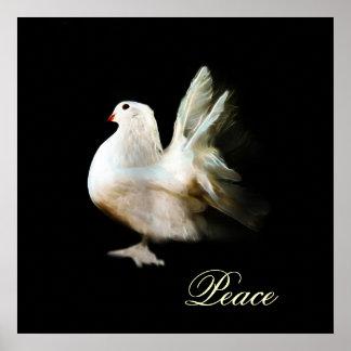 Símbolo de paz de la paloma del blanco póster