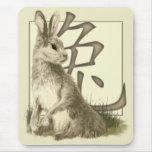 Símbolo Mousepad del conejo y del chino Alfombrillas De Raton