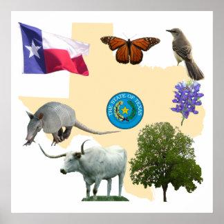Símbolos de estado de Tejas Posters
