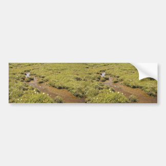 Simeonof island bog bumper stickers