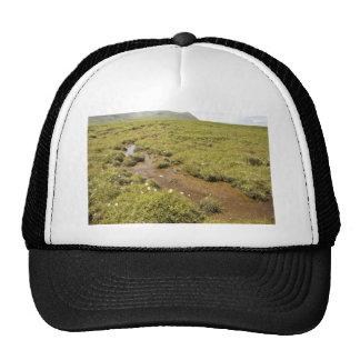 Simeonof island bog trucker hat