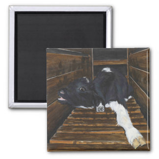 Simon the Veal Calf 2 Inch Square Magnet