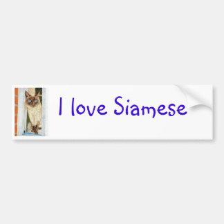 Simone at the Window (Siamese) Bumper Sticker