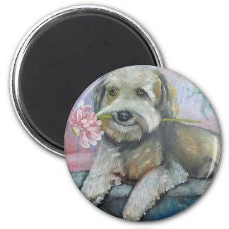 simpatia di un cane.jpg 2 inch round magnet