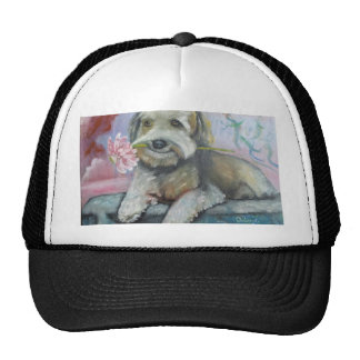 simpatia di un cane.jpg hat