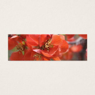 Simple Beauty Mini Business Card