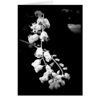 Simple Black and White Flowers Blank Card