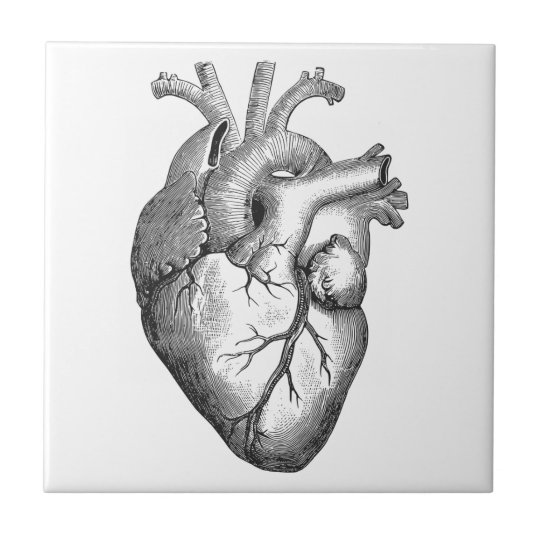 Simple Black White Anatomy Heart Illustration Ceramic Tile