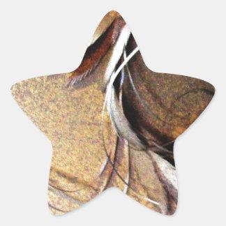 Simple Brown Flower by Robert E Meisinger 2014 Star Sticker