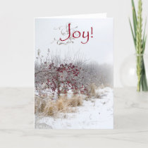 Simple Country Christmas greeting cards