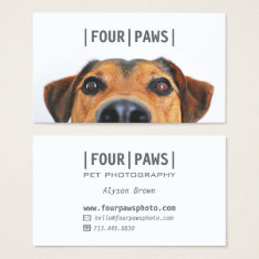 Simple Gray Pet Photography Cute Dog Photo Plain Business Card at Zazzle