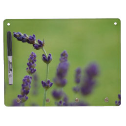 Simple Lavender Dry Erase Board With Keychain Holder